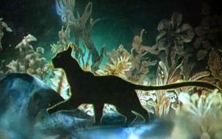 Сказка Кошка, гулявшая сама по себе – Р. Киплинг